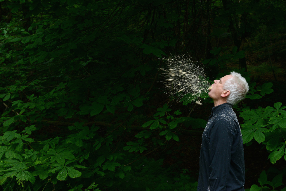 Andy Goldsworthy. Oak Spits Dumfriesshire, Scotland 19 June 2015 © Andy Goldsworthy